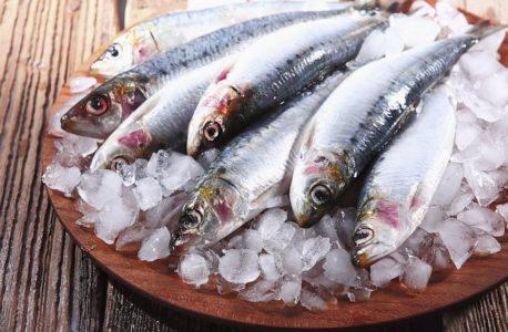 10 raisons pour lesquelles les fruits de mer sont sains pour vos résultats